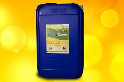 Detergentes Enzimáticos Industriais